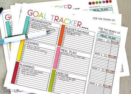 goaltracker2015